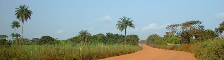 a-dirt-road-in-gambia-2722.jpg